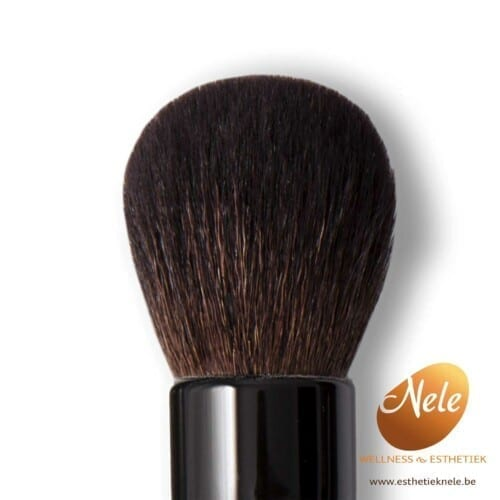 Mineralogie Minerale Make-up Dome Brush Wellness Esthetiek Nele
