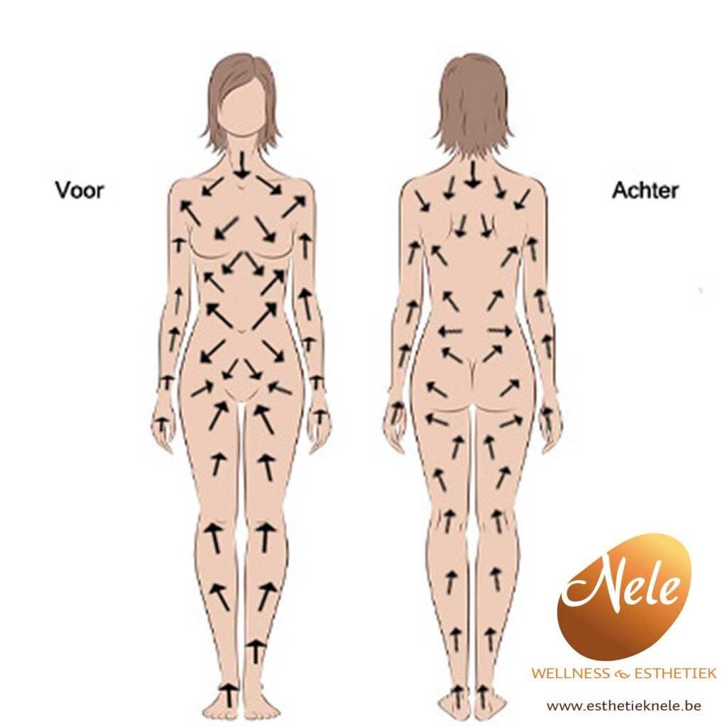 Body Ionic Brush borstelrichtingen Wellness Esthetiek Nele